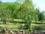 vue  depuis la terrasse du Gîte du Domaine du Château de Luscan