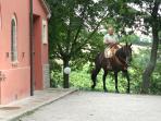 maneggio cavalli Agriturismo la meridiana serrungarina vicino urbino marche
