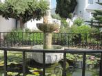 A pond in Capistrano village