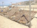 Drying of fish on Nazare beach