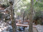 Calendonia Falls Troodos