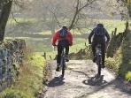 Mountain biking, climbing, horse riding, quad biking or relaxing walks - there's plenty to do!