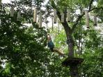 Adventure Parc, Climbing through trees doing different activities, a great day out!