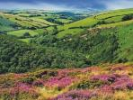 The beauty of Exmoor and Dartmoor are within easy reach for some fantastic walking