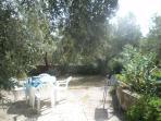 BBQ area in garden