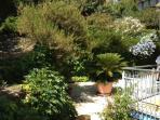 Giardino esterno Outdoor garden