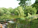 une terrasse surplombant l'étang