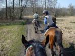 Horse-riding excursions around Borgoiano-resort