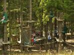 Nella stagione estiva parco sospeso nel bosco per tutti dai piccini ai nonni in massima sicurezza