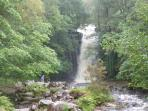 Blaen Y Glyn waterfalls are just 5 minutes up the road!