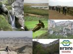 La observación de Aves y el disfrute de la naturaleza, Navarra tierra de Diversidad....