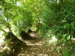 Our Valley Footpath leading to the Beach
