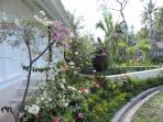 l'entrée et son jardin