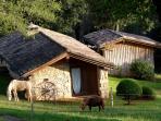 Our both poneys, at le Hameau du sentier des Sources - Sarlat  Dordogne
