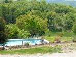 piscine en pleine nature