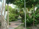 jardin devant studio