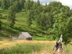 Near Loch an Eilein