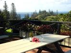 Fantastic views while having a bbq on the deck out front.