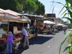 Saturday market in local town