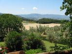 View from the terrace to the gaden and property