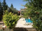 huge private garden with mature pomegrenate trees