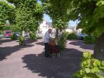 The Hurdy Gurdy man in our village square of St Clair sur Elle