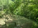 Property's private path by mountain stream