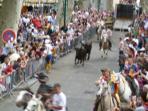 La Feria Celebration each July