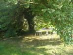 Le jardin: l'arbre des amoureux!