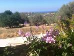 Helidonia Villas-Crete, villa STEFANOS / panoramic views