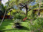 Populi's private tropical park