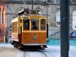 Tram Tours at 300 meters