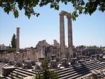 This is the Beautiful ' APOLLON  TEMPLE ' which is only a 15min walk from my Apartment