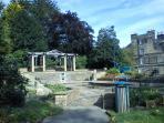 Lily pond Pannett Park