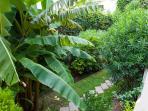 Garden ...