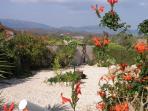Jacaranda -view from back terrace towards Monchique mountains