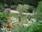 A small part of the garden in mid summer.
