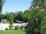 Le jardin arboré et reposant avec des forêts et des sentiers pour la randonnée en Bourgogne