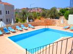 Large pool and spacious patio area