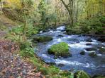 The Ysgethin river walk in Tal-y-Bont with Autumn colours, see the old Drovers bridge