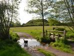 Mote Of Mark Across Rockcliffe Meadow