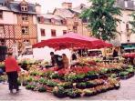 Rennes Flower Market - 1 hour