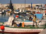 Fishermen at the harbour of Castellammare