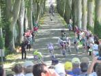 Tour de France in nearby towns