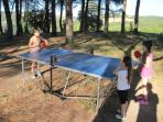 Table tennis under the trees. Also a lot of fun for adults!!