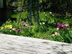 Flower garden and patio in the rear.