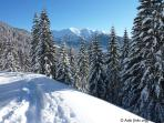 Directly from the house start ski touring and walking trails  (picture: trail to Groebner Hals)