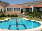 Driftwood villa and pool