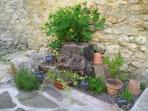 Côté terrasse : Les plantes aromatiques à l'entrée de la cuisine