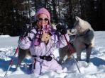 Meet the Huskies of Peisey Vallandry